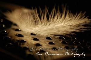 Ewa Neumann Photography Contrast