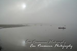 Wexford Fog