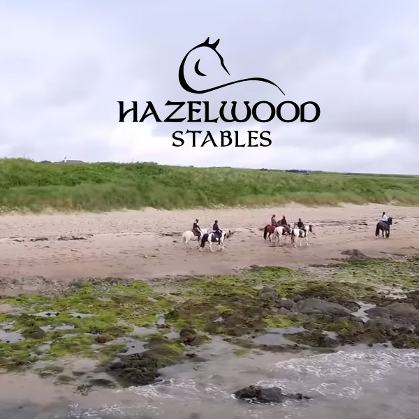 Hazelwood Stables Logo Flyer Video